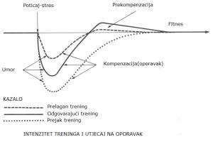 Prekompenzacija i trening model
